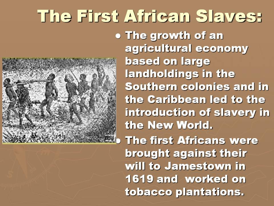 plantation crops and the slavery system essay During the 1800's many diferent events accrued that would change how plantaton crops and slavery systems would be treated during this tme the civil war was fought, lincoln was elected president and the emancipaton proclamaton was wri±en and signed.